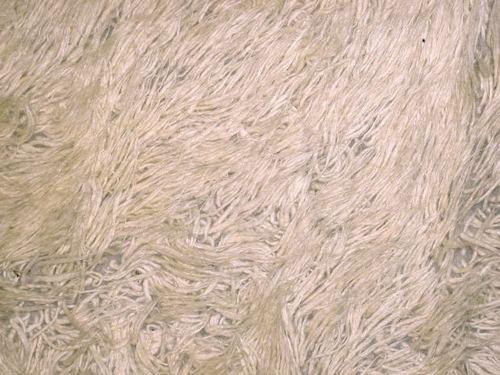 Furry Carpets - Carpet Vidalondon