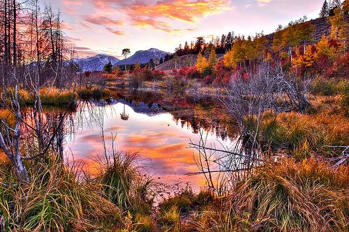 travnaté jezírko v horách západ slunce